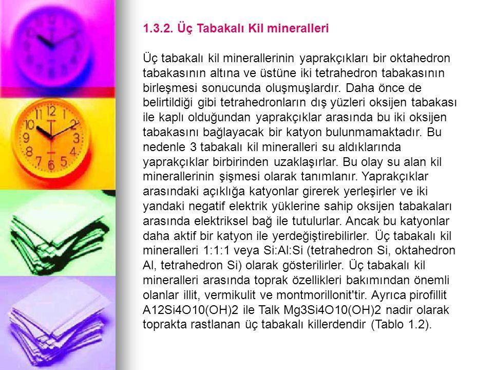 1.3.2. Üç Tabakalı Kil mineralleri