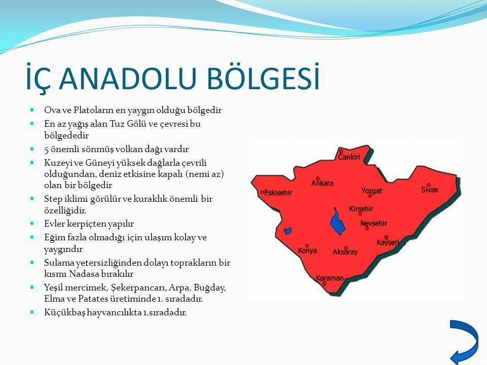 İÇ ANADOLU BÖLGESİ Ova ve Platoların en yaygın olduğu bölgedir