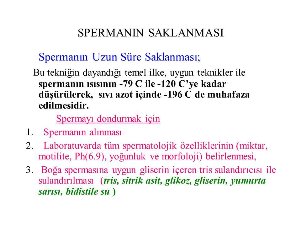 Spermanın Uzun Süre Saklanması;