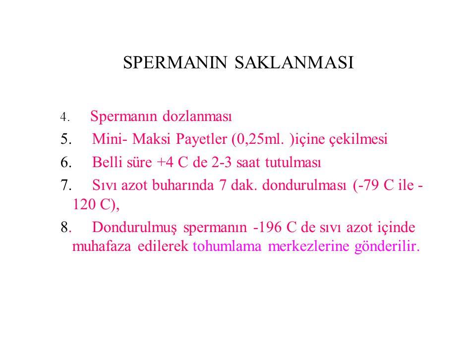 SPERMANIN SAKLANMASI 5. Mini- Maksi Payetler (0,25ml. )içine çekilmesi