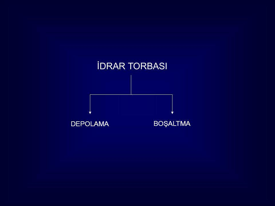 İDRAR TORBASI DEPOLAMA BOŞALTMA