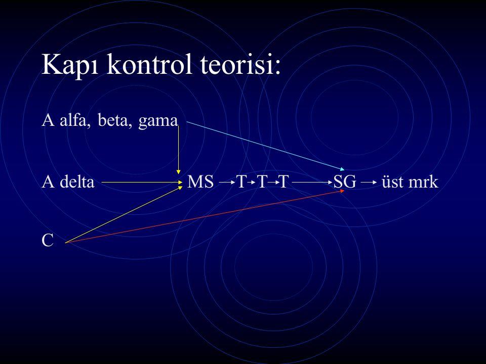 Kapı kontrol teorisi: A alfa, beta, gama A delta MS T T T SG üst mrk C