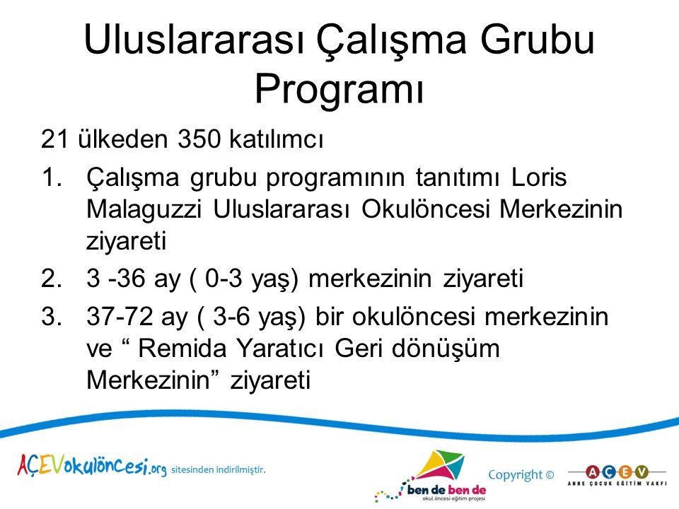 Uluslararası Çalışma Grubu Programı
