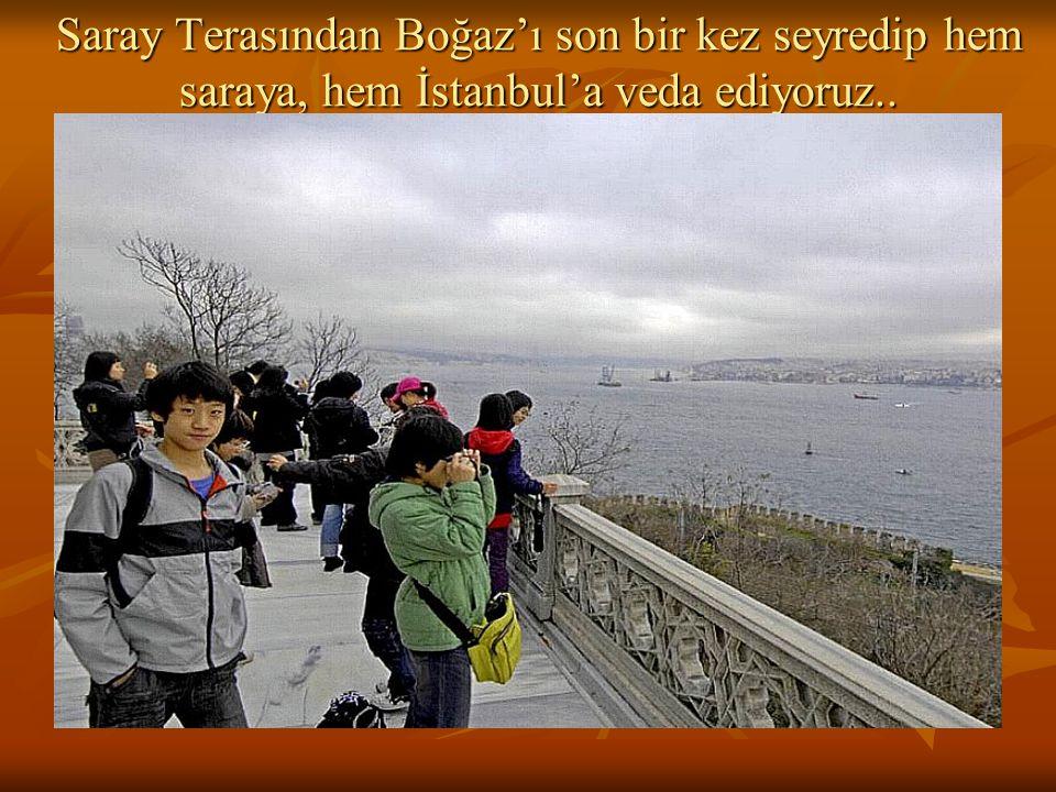 Saray Terasından Boğaz'ı son bir kez seyredip hem saraya, hem İstanbul'a veda ediyoruz..
