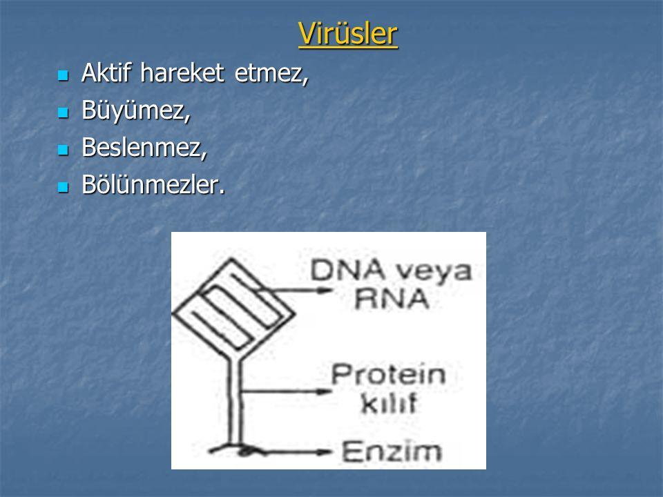 Virüsler Aktif hareket etmez, Büyümez, Beslenmez, Bölünmezler.