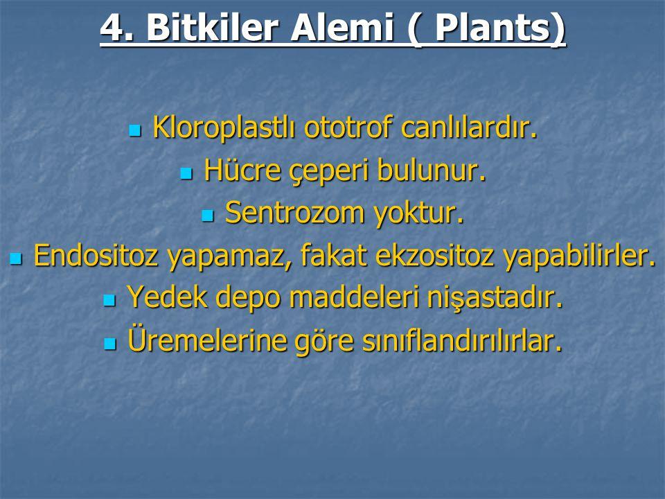 4. Bitkiler Alemi ( Plants)