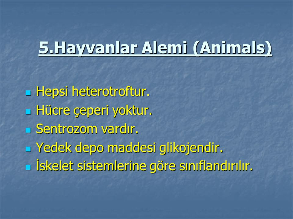5.Hayvanlar Alemi (Animals)