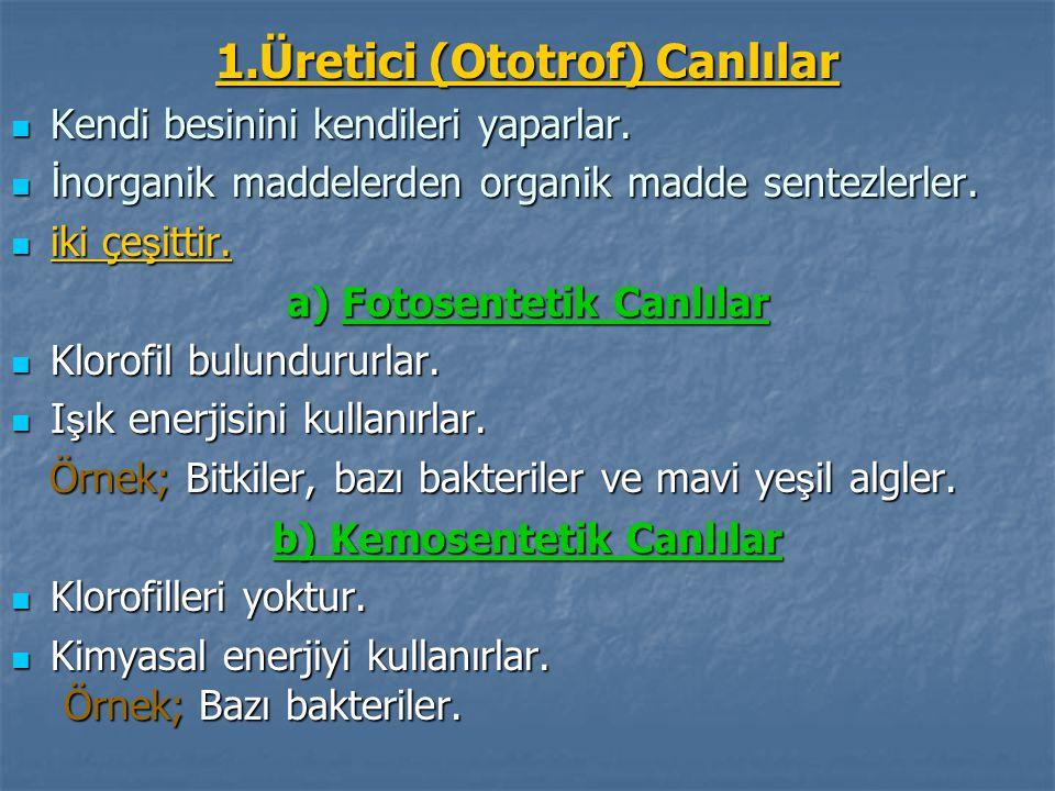 1.Üretici (Ototrof) Canlılar