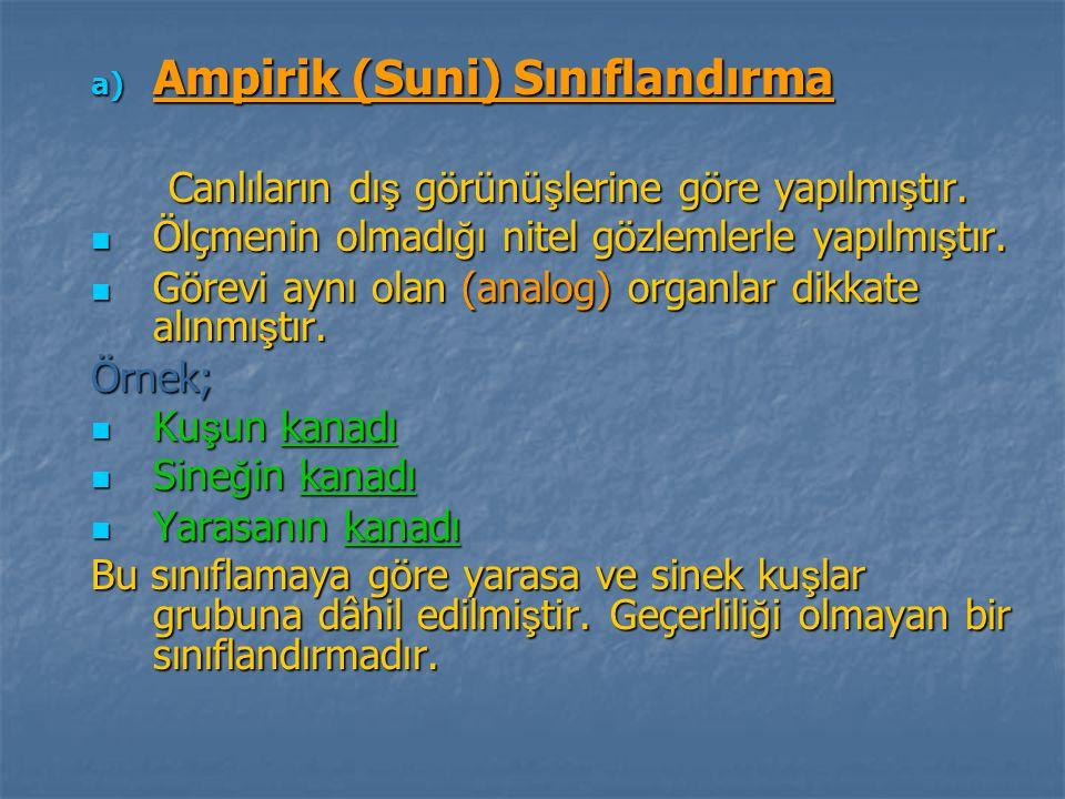 Ampirik (Suni) Sınıflandırma