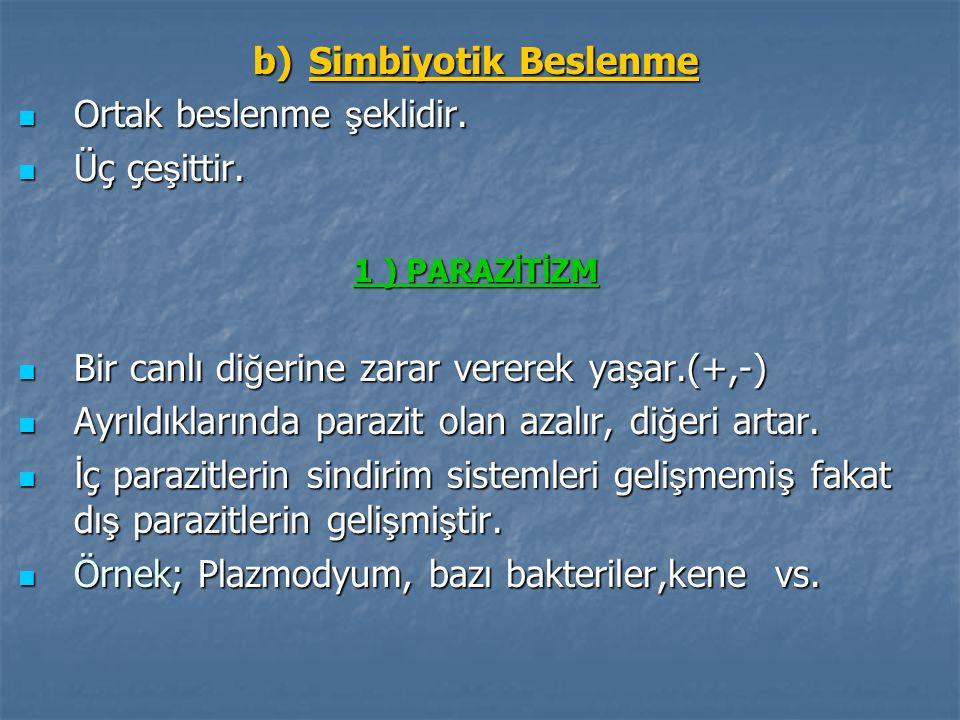 b) Simbiyotik Beslenme