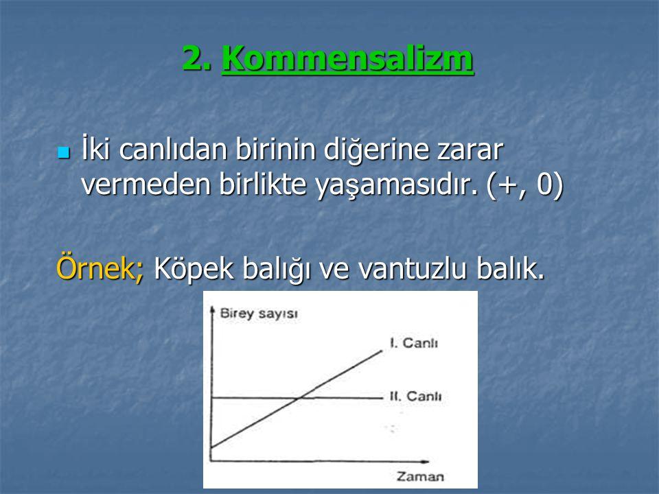 2. Kommensalizm İki canlıdan birinin diğerine zarar vermeden birlikte yaşamasıdır.