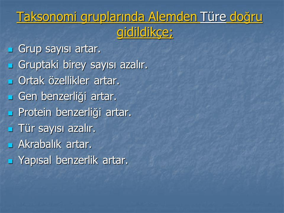 Taksonomi gruplarında Alemden Türe doğru gidildikçe;