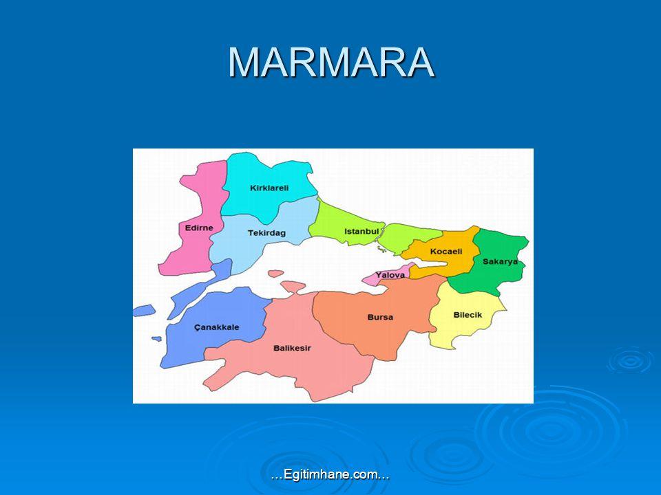 MARMARA …Egitimhane.com…