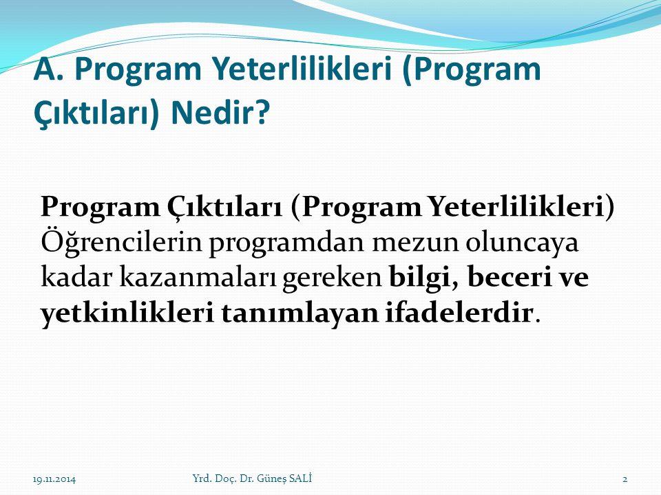 A. Program Yeterlilikleri (Program Çıktıları) Nedir