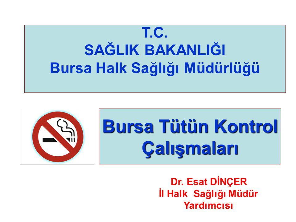 Bursa Tütün Kontrol Çalışmaları