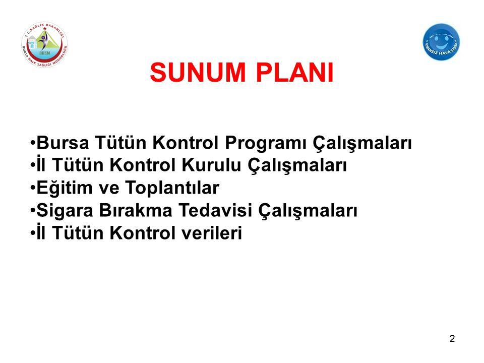 SUNUM PLANI Bursa Tütün Kontrol Programı Çalışmaları