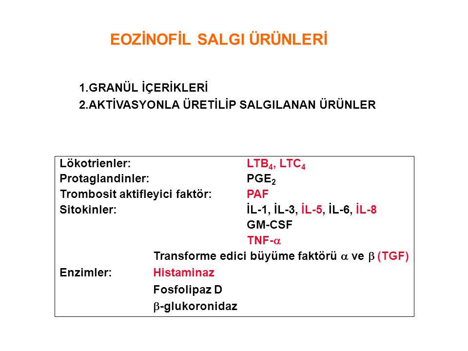 EOZİNOFİL SALGI ÜRÜNLERİ