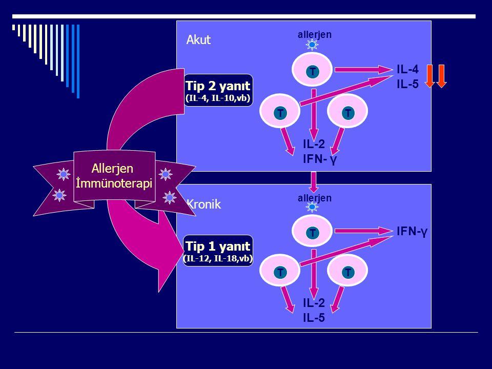 Akut IL-4 IL-5 Tip 2 yanıt IL-2 IFN- γ Allerjen İmmünoterapi Kronik