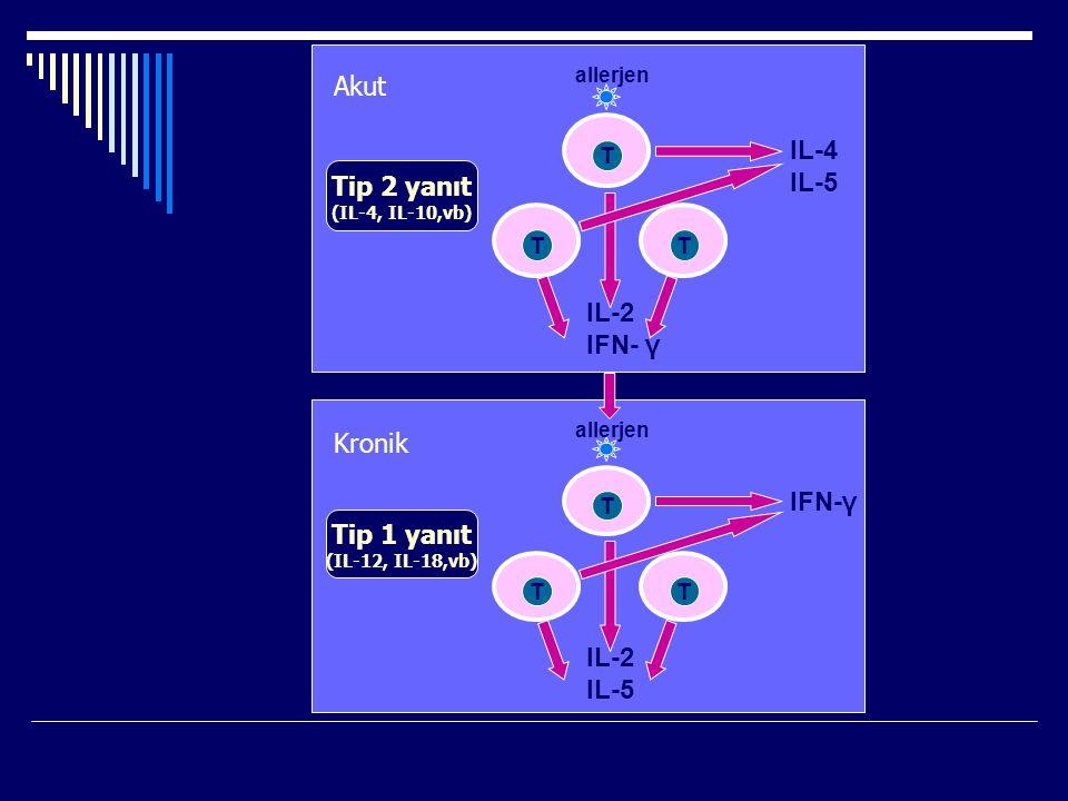 Akut IL-4 IL-5 Tip 2 yanıt IL-2 IFN- γ Kronik IFN-γ Tip 1 yanıt T