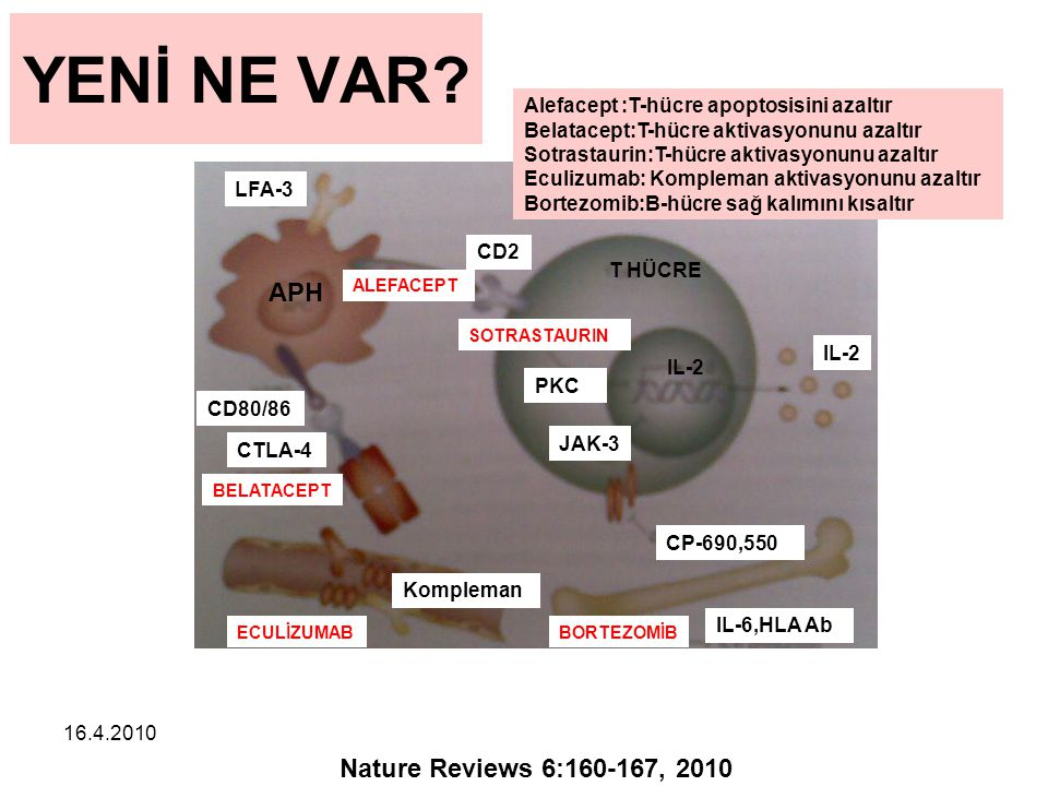 YENİ NE VAR APH Nature Reviews 6:160-167, 2010