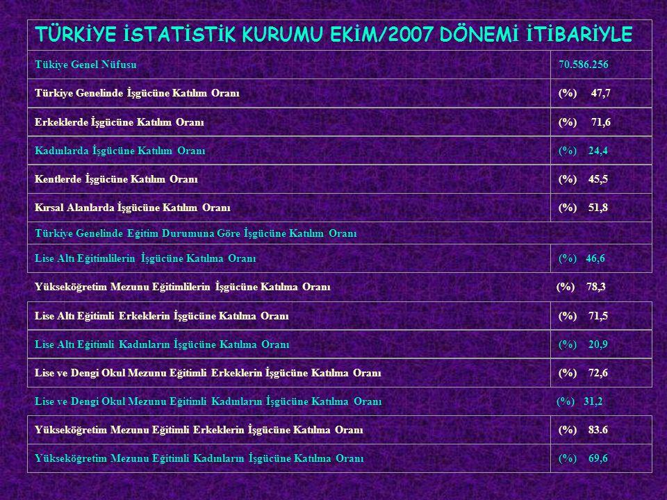 TÜRKİYE İSTATİSTİK KURUMU EKİM/2007 DÖNEMİ İTİBARİYLE
