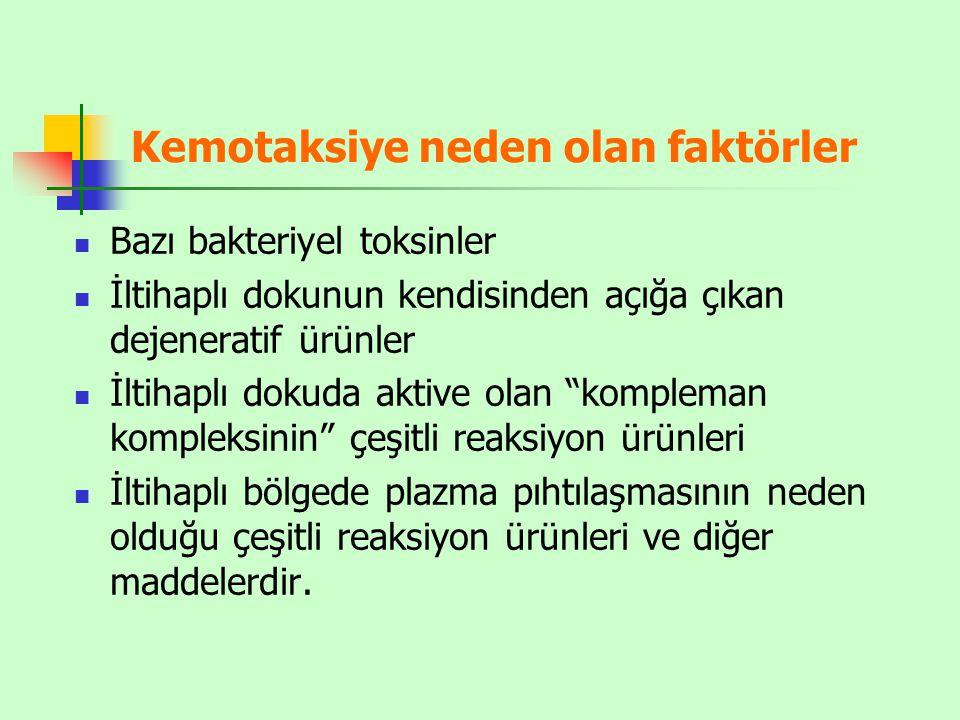 Kemotaksiye neden olan faktörler
