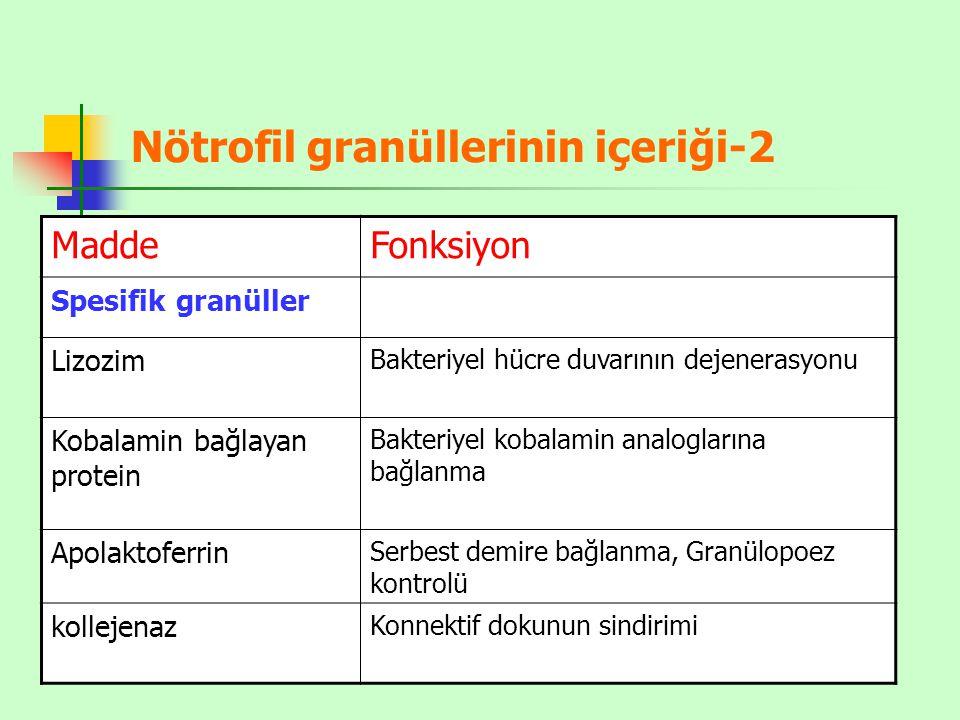 Nötrofil granüllerinin içeriği-2