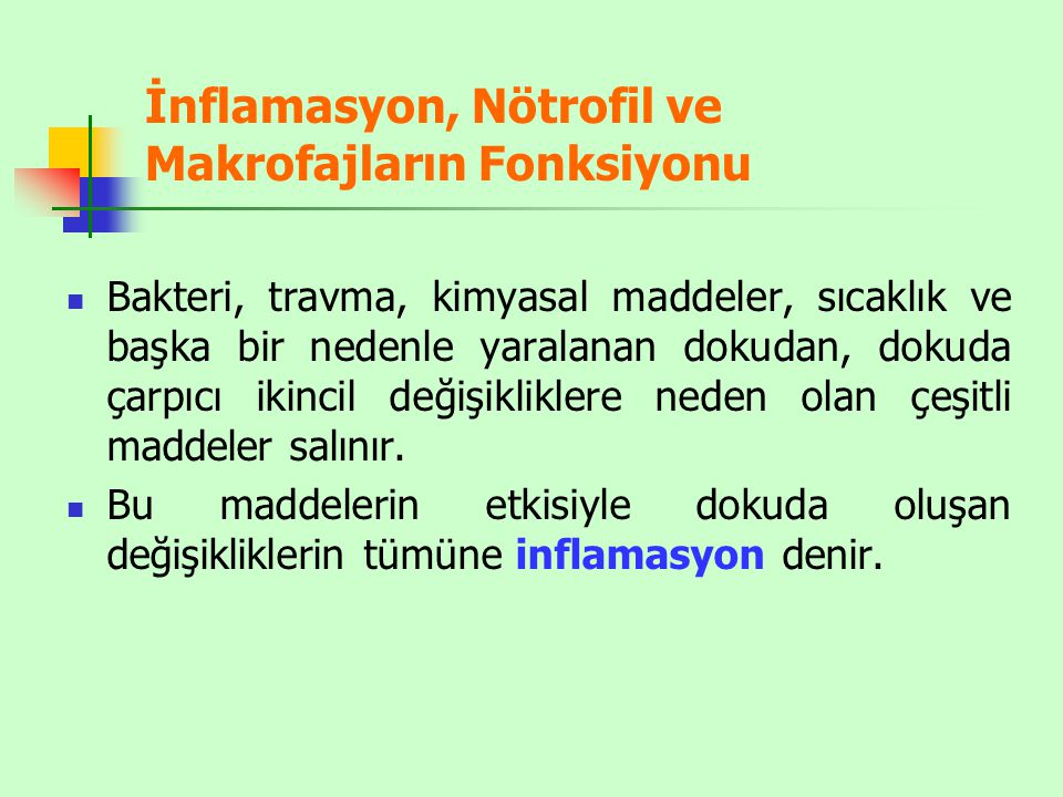 İnflamasyon, Nötrofil ve Makrofajların Fonksiyonu