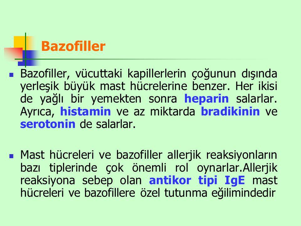 Bazofiller