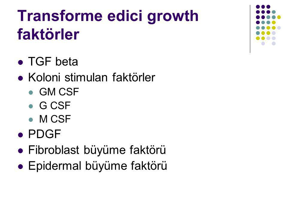 Transforme edici growth faktörler