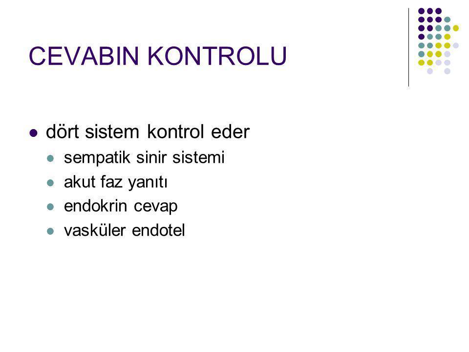 CEVABIN KONTROLU dört sistem kontrol eder sempatik sinir sistemi