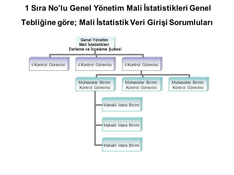 1 Sıra No'lu Genel Yönetim Mali İstatistikleri Genel Tebliğine göre; Mali İstatistik Veri Girişi Sorumluları
