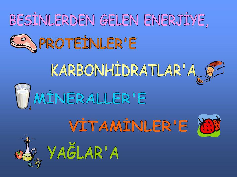 BESİNLERDEN GELEN ENERJİYE,