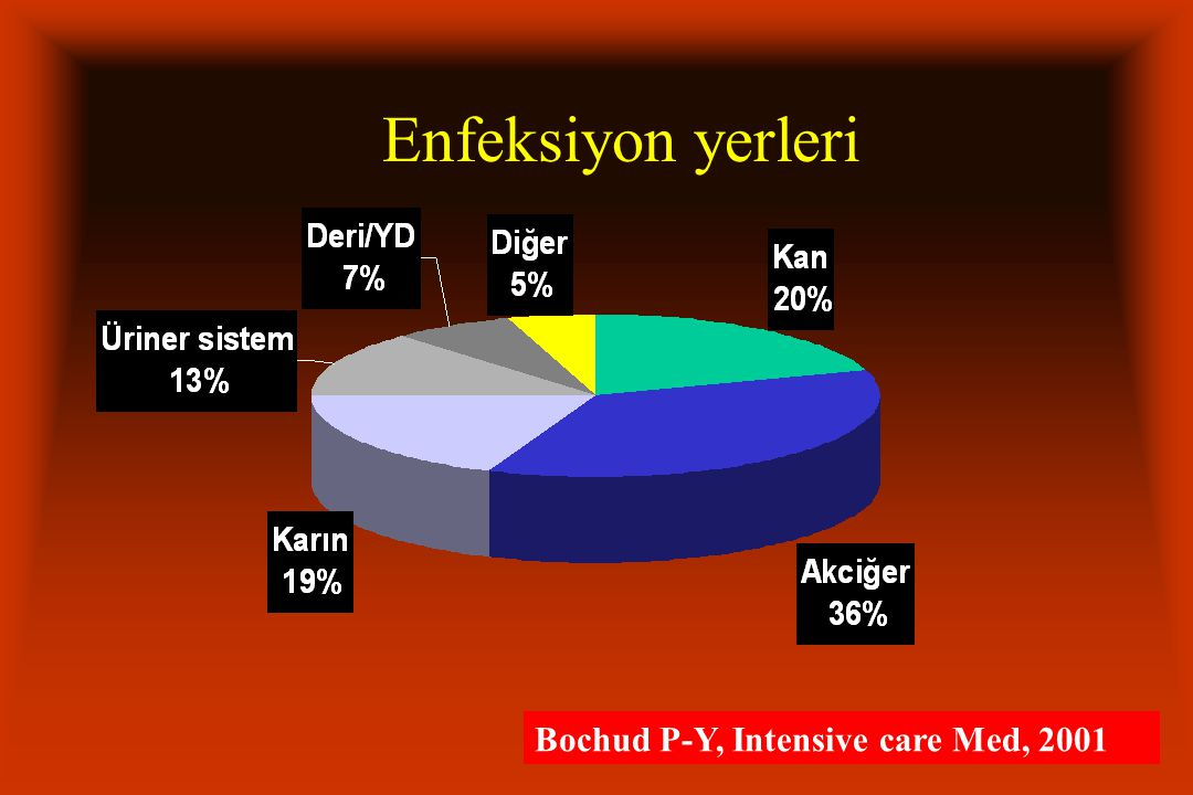 Enfeksiyon yerleri Bochud P-Y, Intensive care Med, 2001