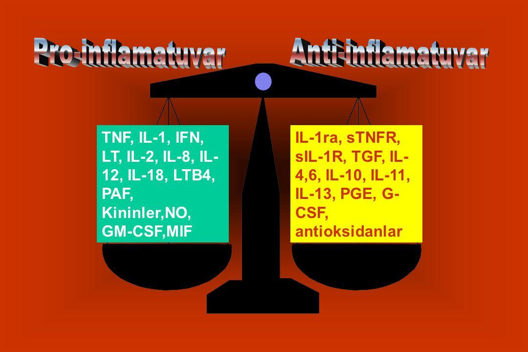 Pro-inflamatuvar Anti-inflamatuvar