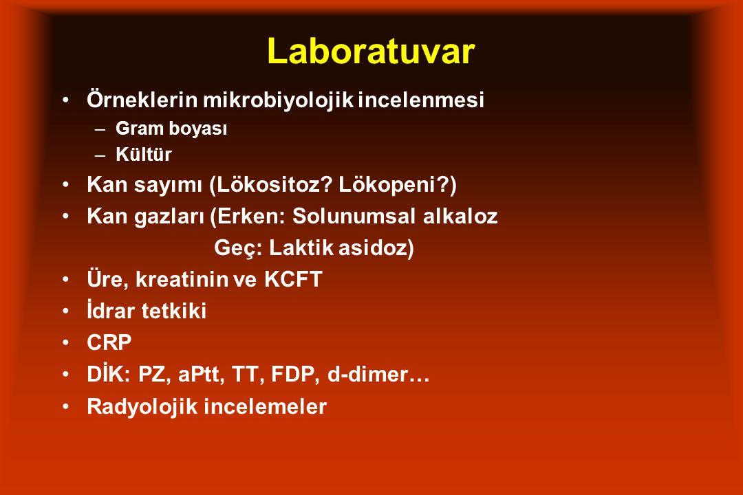 Laboratuvar Örneklerin mikrobiyolojik incelenmesi