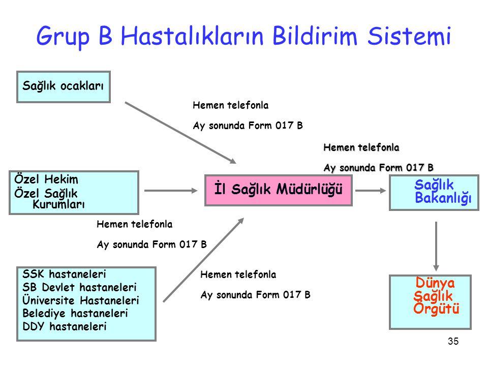 Grup B Hastalıkların Bildirim Sistemi