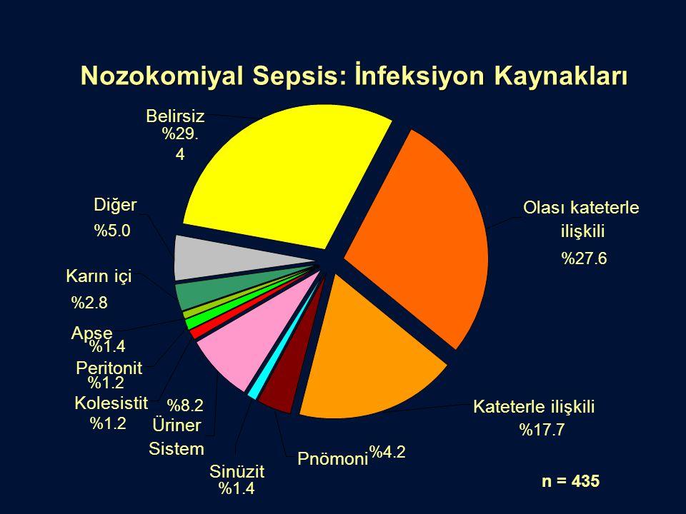 Nozokomiyal Sepsis: İnfeksiyon Kaynakları