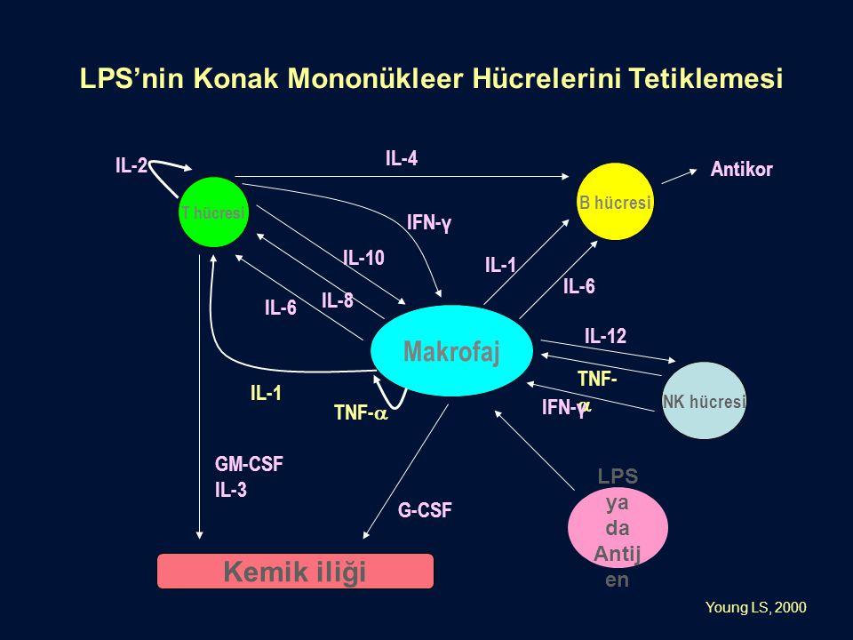 LPS'nin Konak Mononükleer Hücrelerini Tetiklemesi