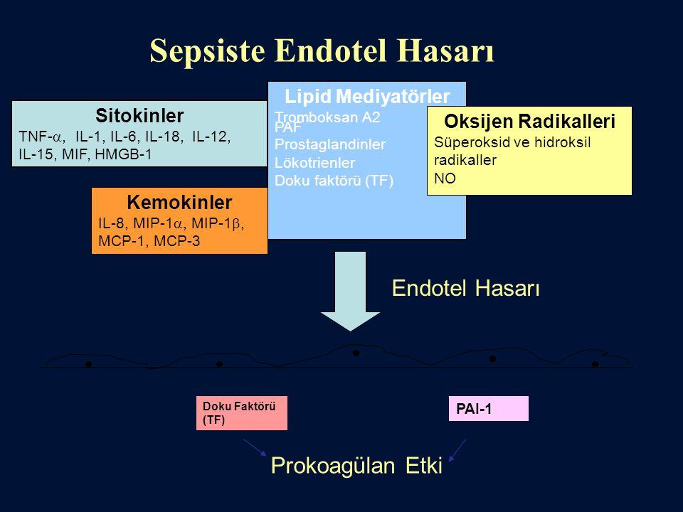 Sepsiste Endotel Hasarı