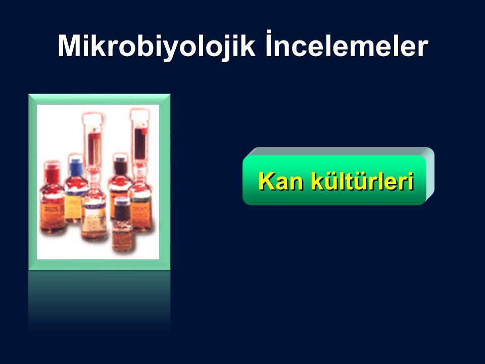 Mikrobiyolojik İncelemeler