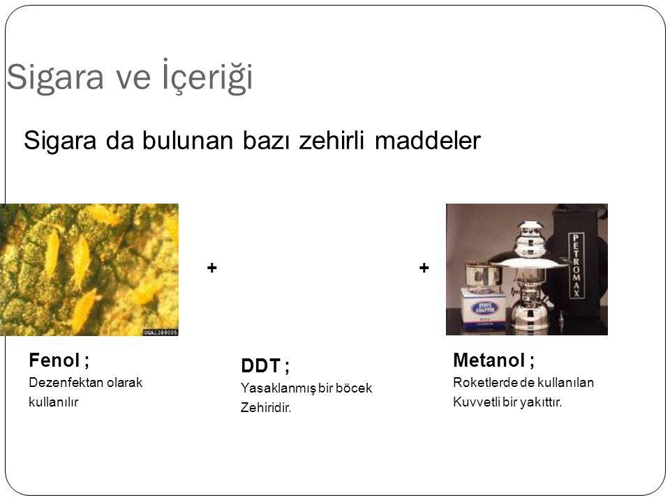 Sigara ve İçeriği Sigara da bulunan bazı zehirli maddeler + + Fenol ;