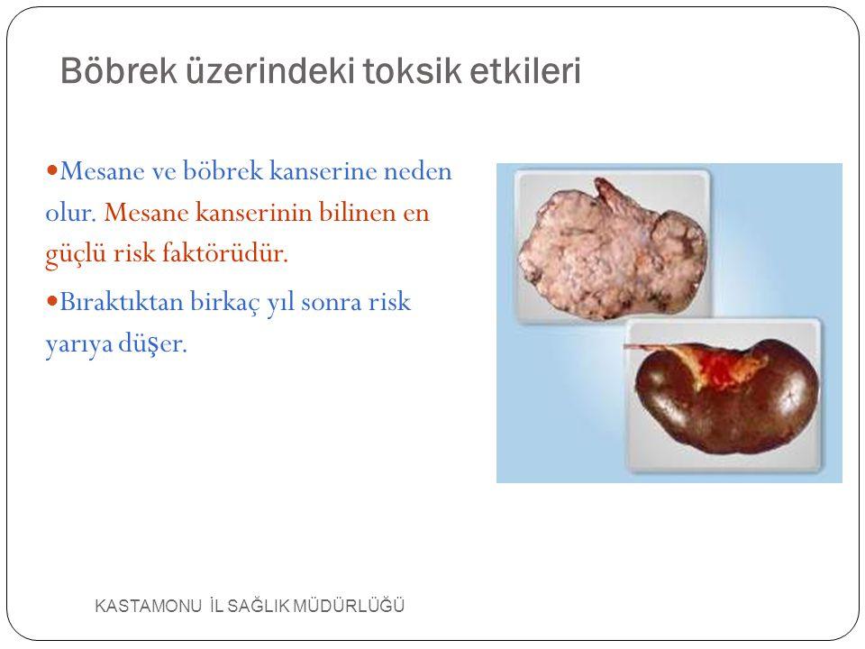 Böbrek üzerindeki toksik etkileri