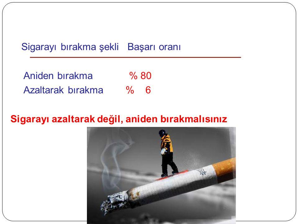 Sigarayı bırakma şekli Başarı oranı
