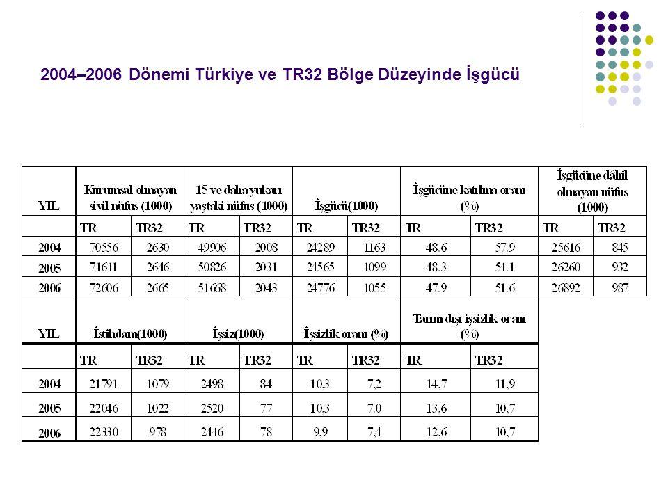 2004–2006 Dönemi Türkiye ve TR32 Bölge Düzeyinde İşgücü
