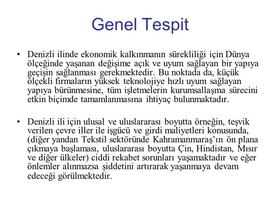 Genel Tespit