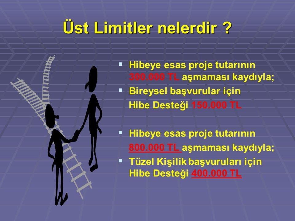 Üst Limitler nelerdir Hibeye esas proje tutarının 300.000 TL aşmaması kaydıyla; Bireysel başvurular için.
