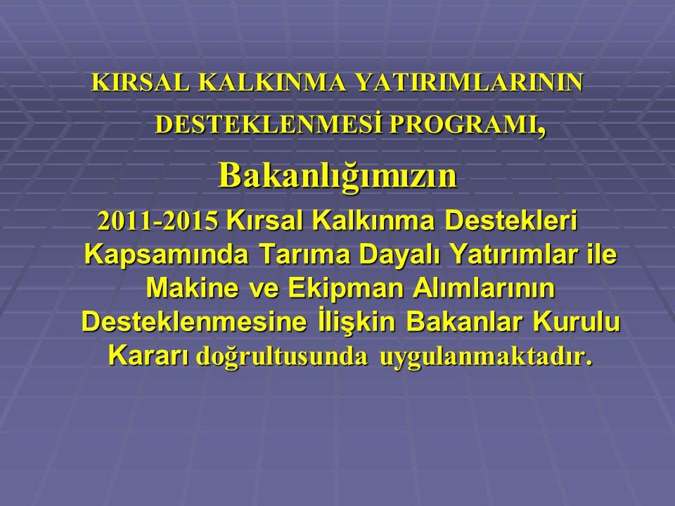 KIRSAL KALKINMA YATIRIMLARININ DESTEKLENMESİ PROGRAMI,