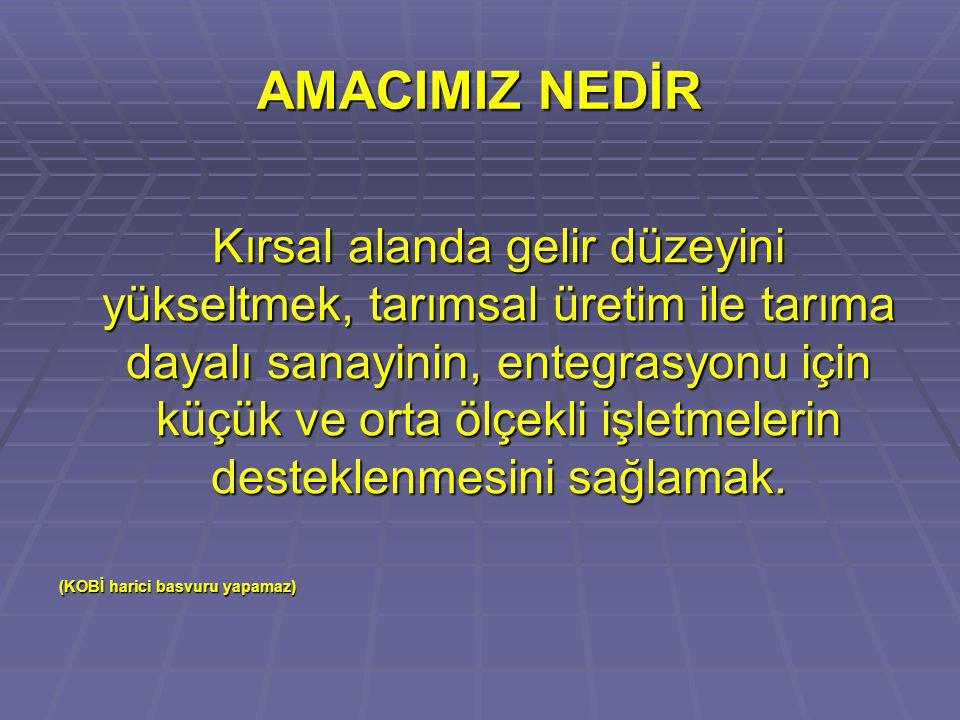 AMACIMIZ NEDİR
