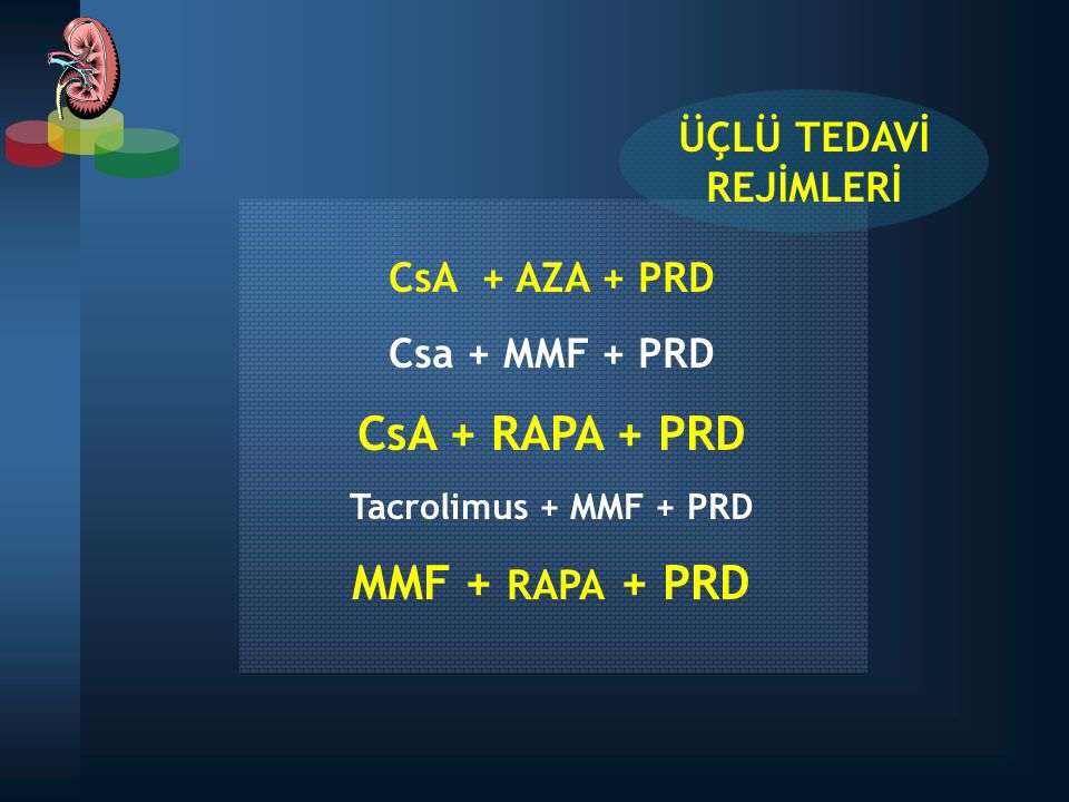 CsA + RAPA + PRD MMF + RAPA + PRD